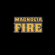 FIRE221A